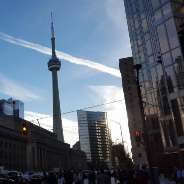CN Tower Toronto Canada Red Leaf